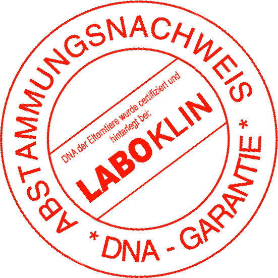 logo dna test.rund